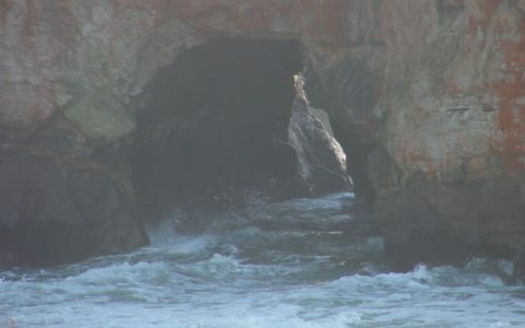 Fort Bragg beach cave