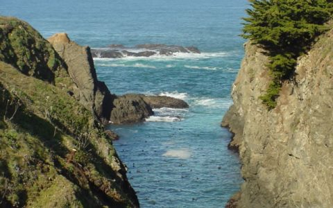 Mendocino cliffs and beach